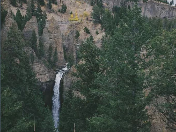 forestWaterfall