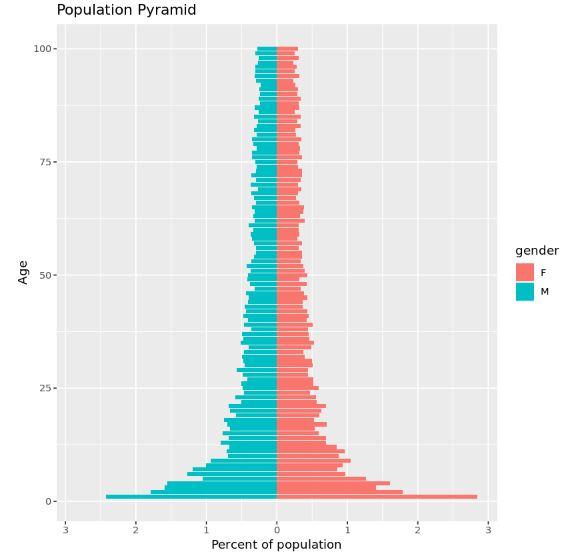 Population pyramid in R using ggplot2