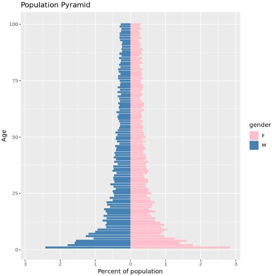 Population pyramid in R with custom colors